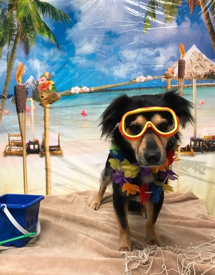 Winnie W Beach